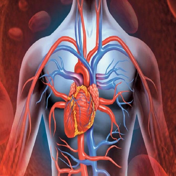 aort-anevrizmasi