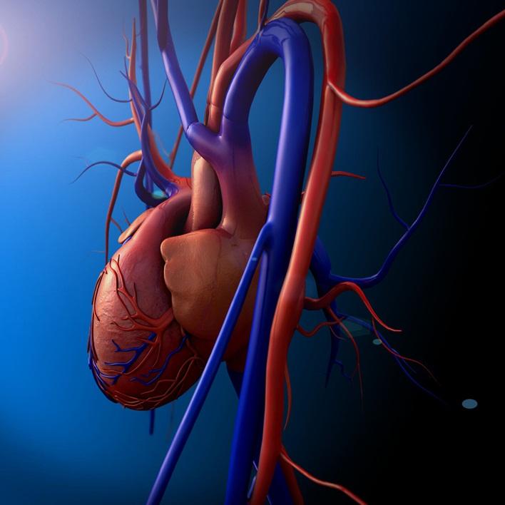 kalp-nakli-ameliyati-basari-orani-nedir