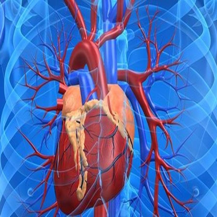 kalp-nakli-hangi-durumlarda-yapilir
