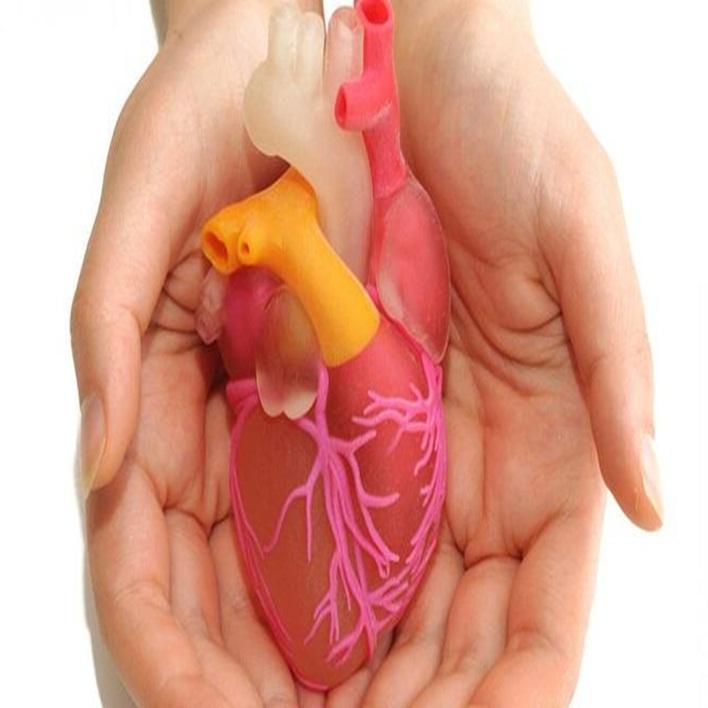 kalp-nakli-sonrasi-komplikasyonlari-nelerdir