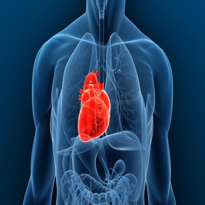 kalp-nakli-yapan-hastaneler-hangileridir