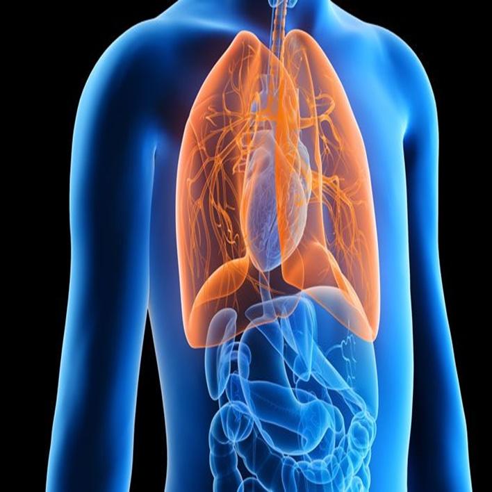 kistik-fibrozis