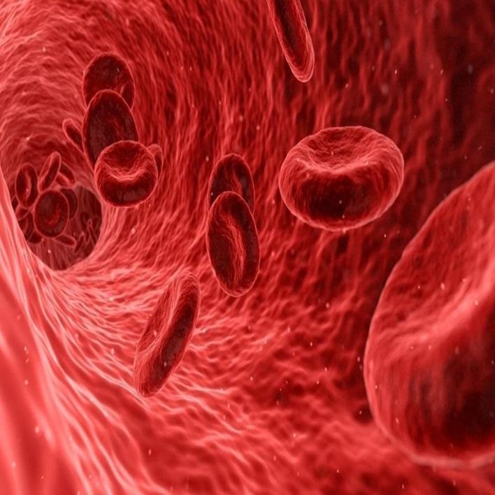 monosit-yuksekligi-nedenleri-nelerdir