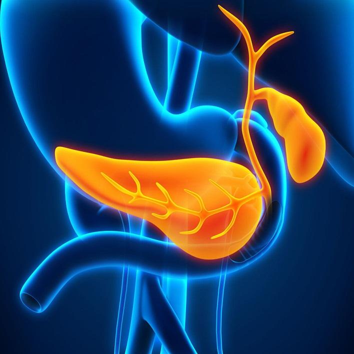 pankreas-nakli-kimlere-yapilir