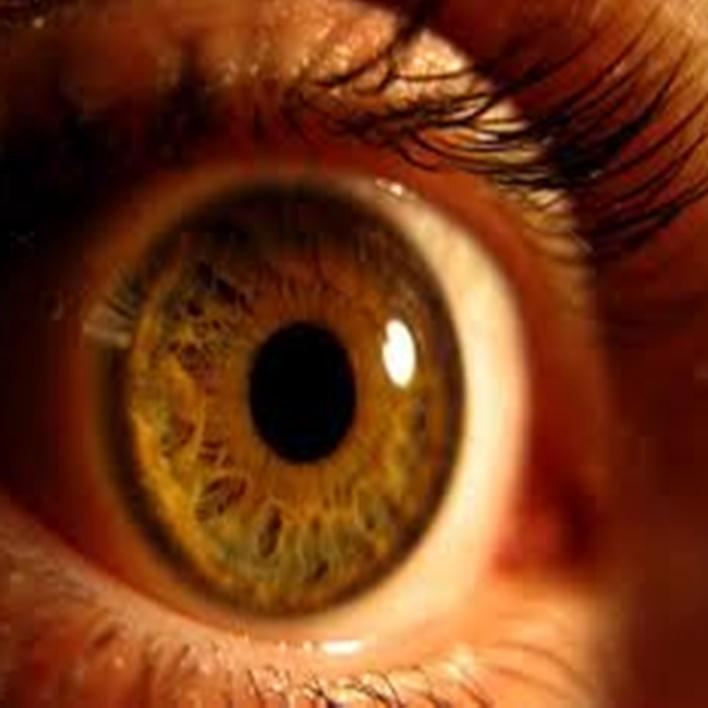 retina-yirtilmasi-engelli-raporu